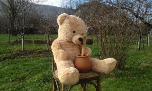 Police officer solves case of a missing teddy bear